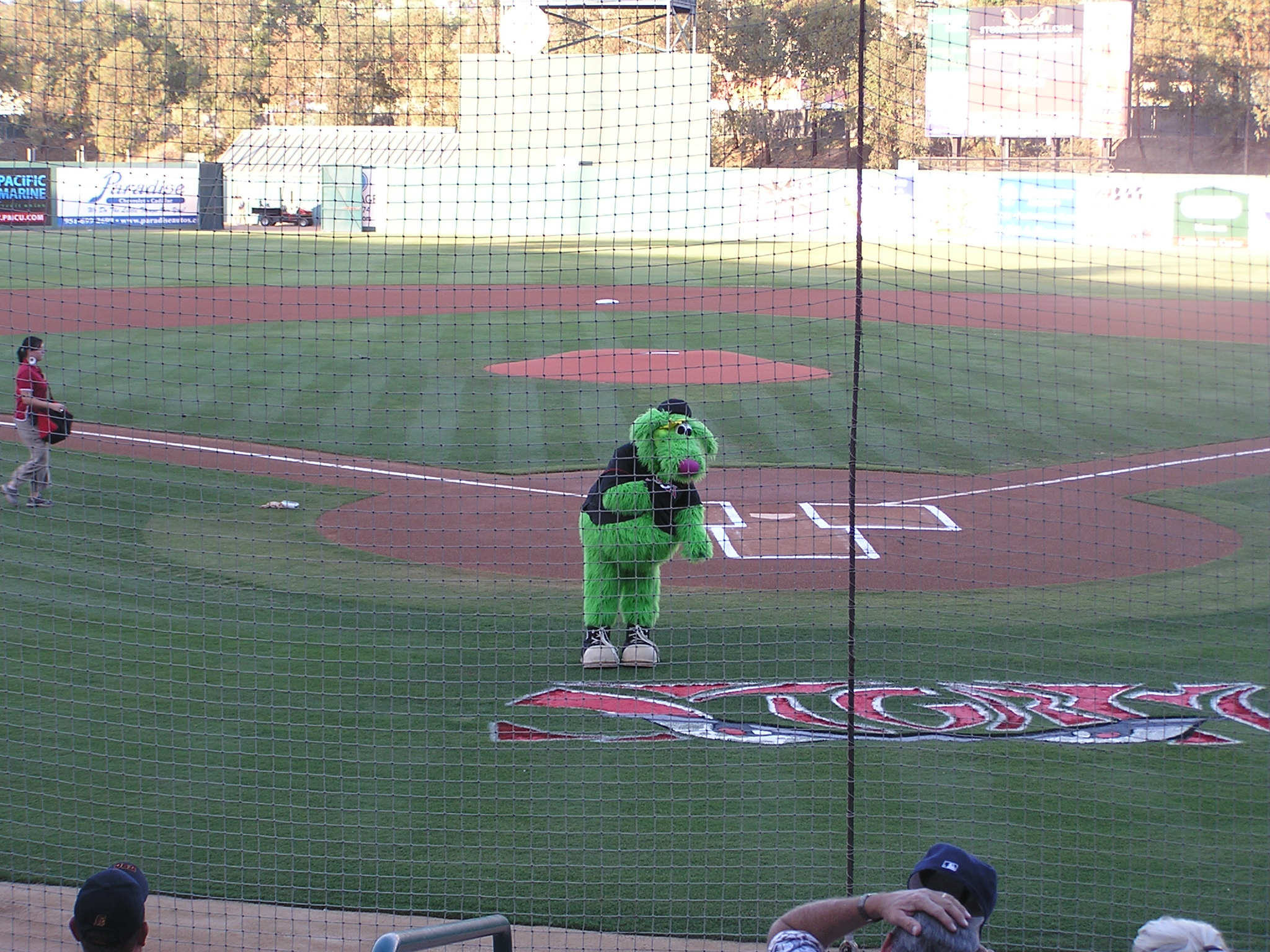 Thunder, the Lake Elsinore Mascot